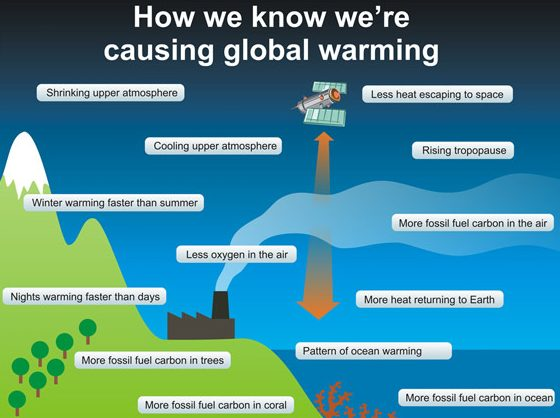 The Causes Of Global Warming List